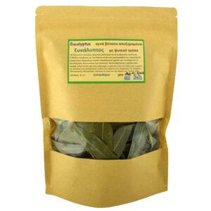eukaluptos-eucalyptus-sp-kilkis-40gr
