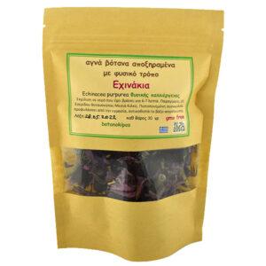exinakia-echinacea-purpurea-kilkis-30gr